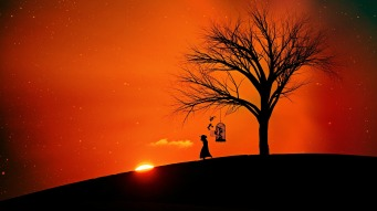 evening-sun-2383966_1920
